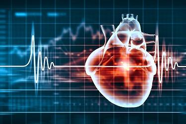 cardiovascular training grant