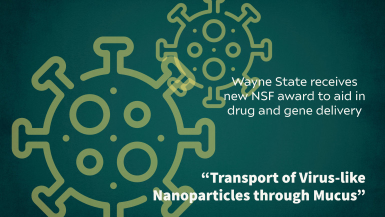 Dr. Mukhopadhyay from Wayne State's Department of Physics and Astronomy received a grant from NSF to help fight diseases and develo engineered nanoparticles for more efficient drug or gene delivery.