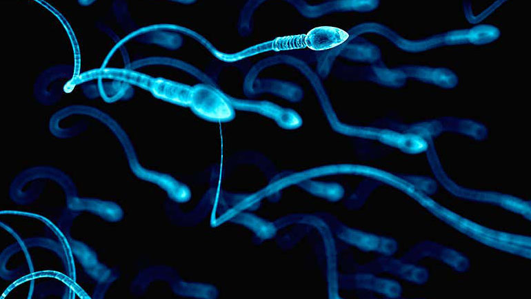 A new collaborative study provides the first in-depth look at the microbiome of human sperm utilizing RNA sequencing with sufficient sensitivity to identify contamination and pathogenic bacterial colonization.