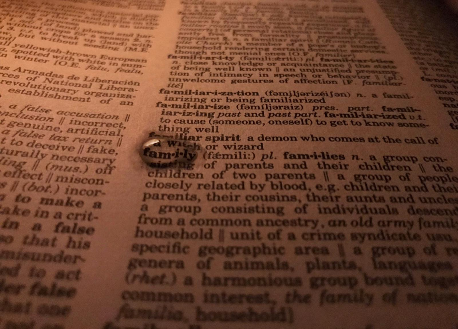 photo of the word family in the dictionary